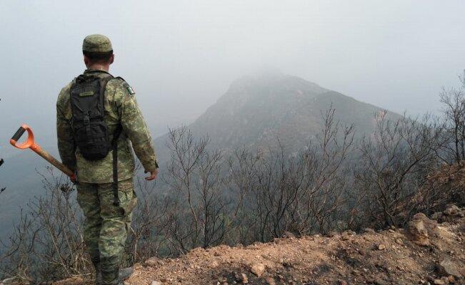 Controlan el 90% de mega incendio forestal en Veracruz